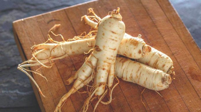 Ginseng Benefits for Health
